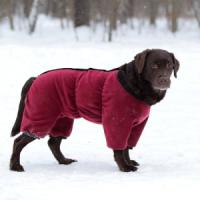 Фотография товара Комбинезон для собак Osso Fashion, размер 55