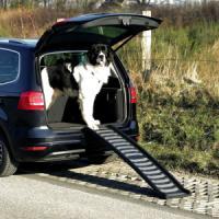 Фотография товара Пандус для собак Trixie Petwalk Folding Ramp, размер 39х160см.