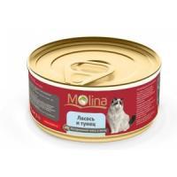 Фотография товара Корм для кошек Molina, 80 г, лосось с тунцом