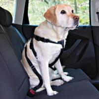 Фотография товара Ремень безопасности для собак Trixie