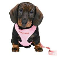 Фотография товара Шлейка для щенков Trixie, розовый