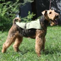 Фотография товара Попона для собак Osso Fashion