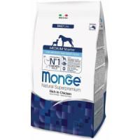 Фотография товара Корм для щенков Monge Dog Medium Starter, 1.5 кг, курица с рисом